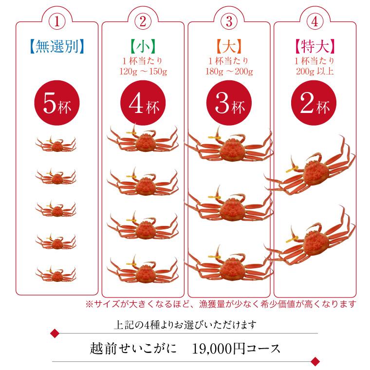 越前がに-セット内容(24,000円コース)