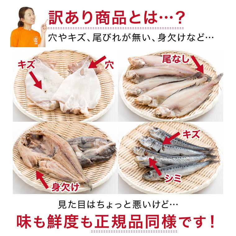 【定期購入】おまかせ1.2kg訳あり干物セット(訳アリとは)