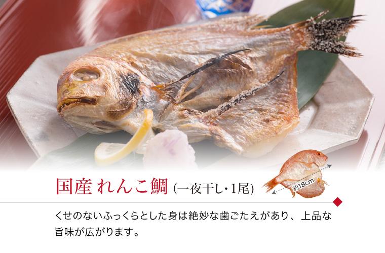 れんこ鯛1枚