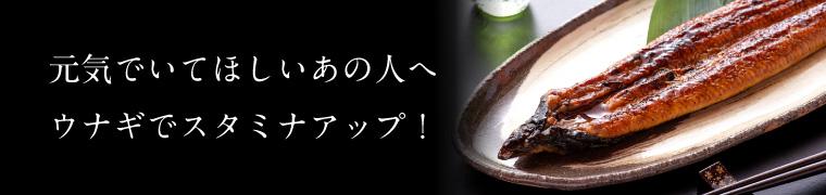干物セット特集(うなぎと干物)
