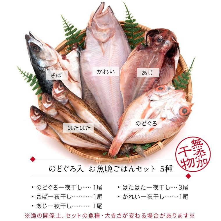 お魚晩ごはん5種7品-セット内容