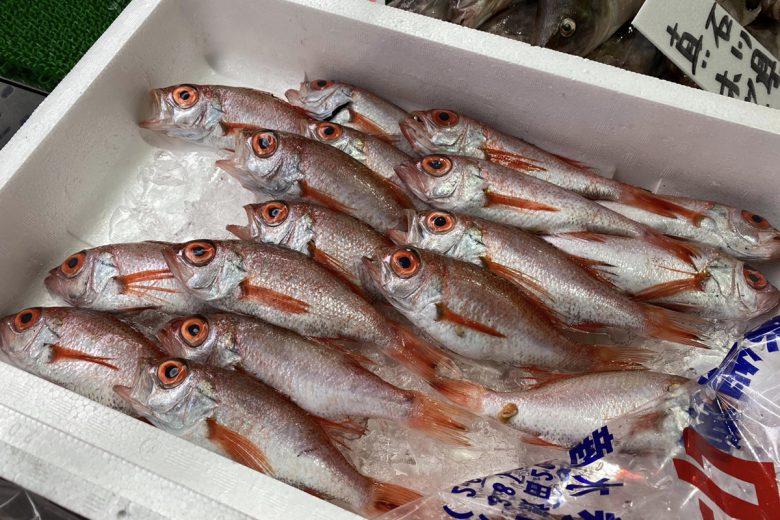 【2020年5月25日】福井県で獲れた旬のお魚たち。福井中央卸売市場より。