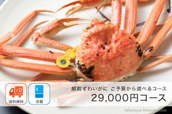 越前ずわいがに(オスがに) 2万8千円コース(1杯300g~400g)【冷蔵】