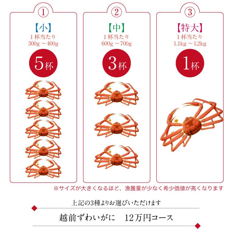 越前ずわいがに(10万円コース)