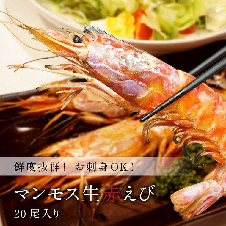 赤えび20-イメージ