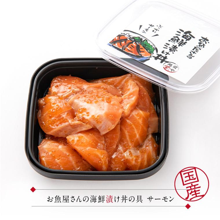 海鮮漬丼-サーモン-セット内容